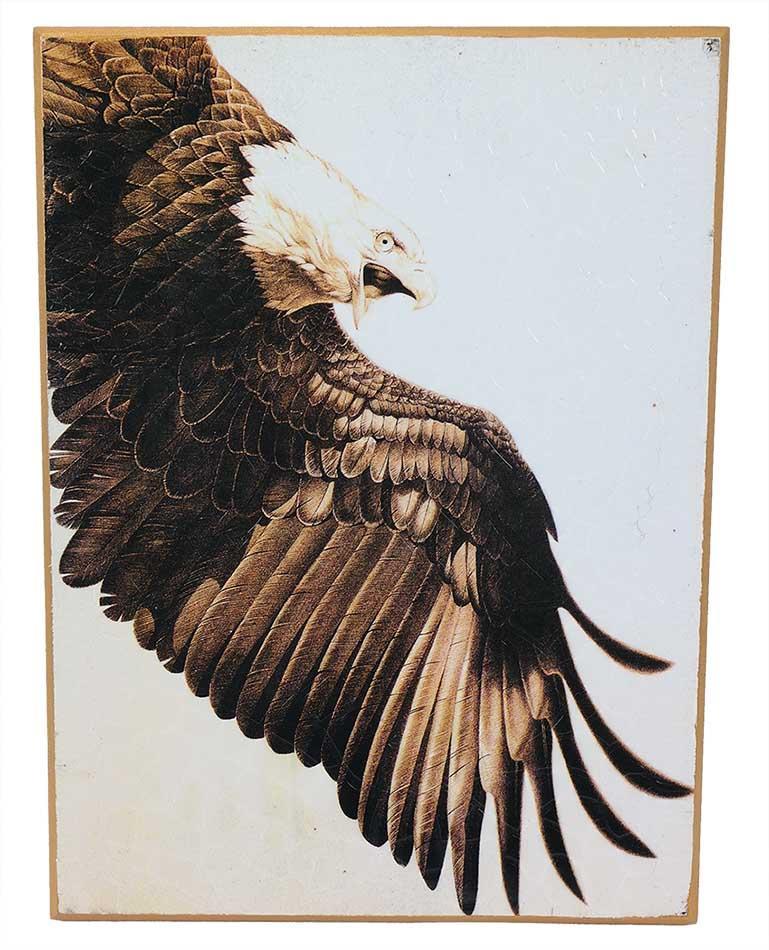 schilderij adelaar